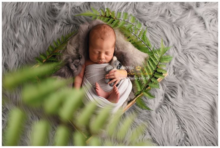 newbornfotosessie jungle