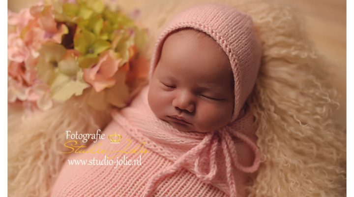 Newborn Fotoshoot|roze wolk|in fotostudio