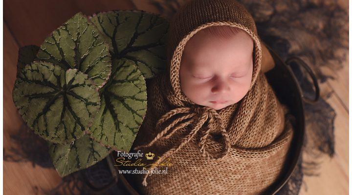 Newbornfotoshoot regio spijkenisse