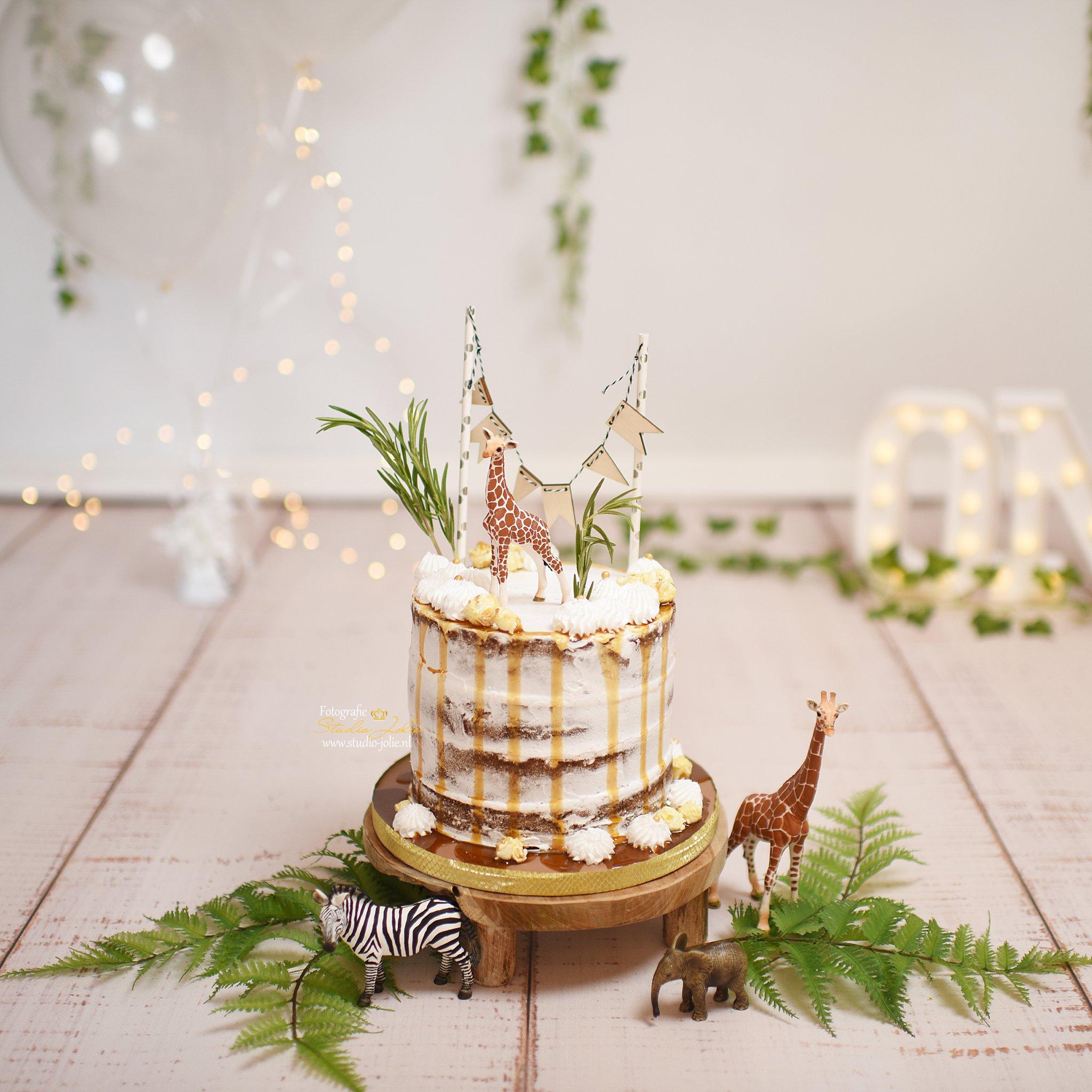Jungle taart cakesmash.jpg